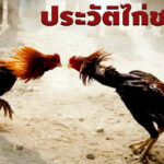 ประวัติไก่ชนไทย แทงไก่ชนออนไลน์