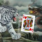"""วิธีเล่นเกมไพ่ เสือมังกร """"Dragon tiger"""""""